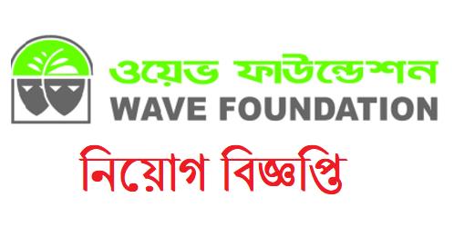 WAVE Foundation Job Circular